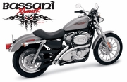 Bassani SWEEPERS