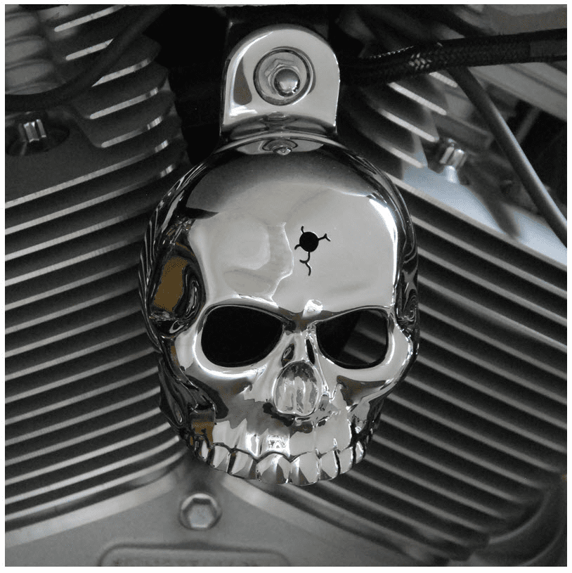 Chrome Bin Laden Skull