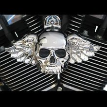 Chrome Winged Skull Cover