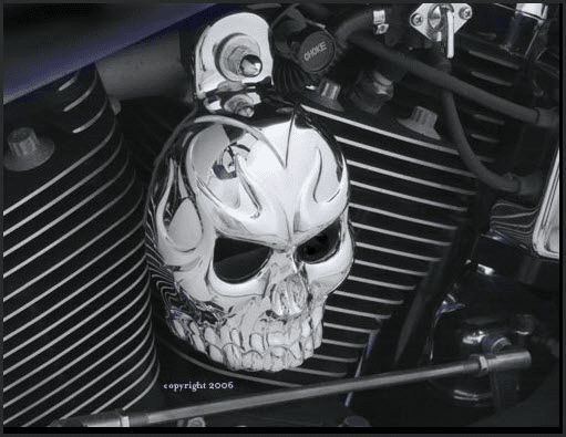 Evil Twin Chrome Skull Horn Cover