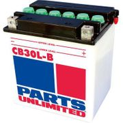 Parts Unlimited Heavy Duty Battery