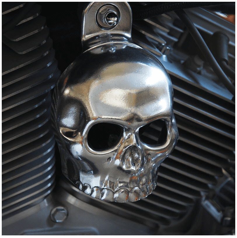 Polished Aluminum Skull Cover