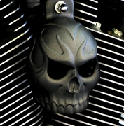 Textured Black Powder Coat Evil Twin Skull