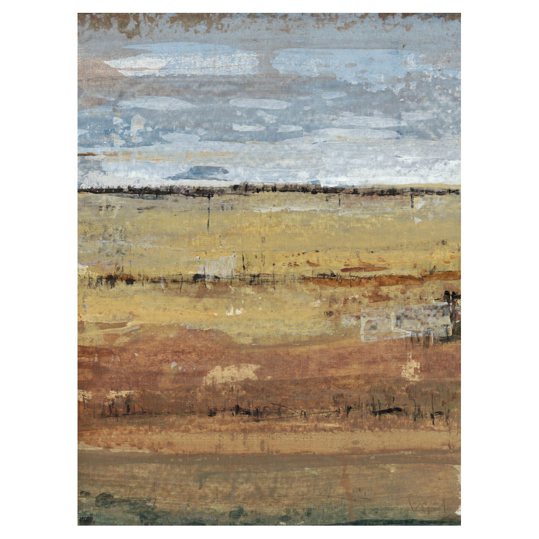 Abstract Field I Gallery Wrapped Canvas