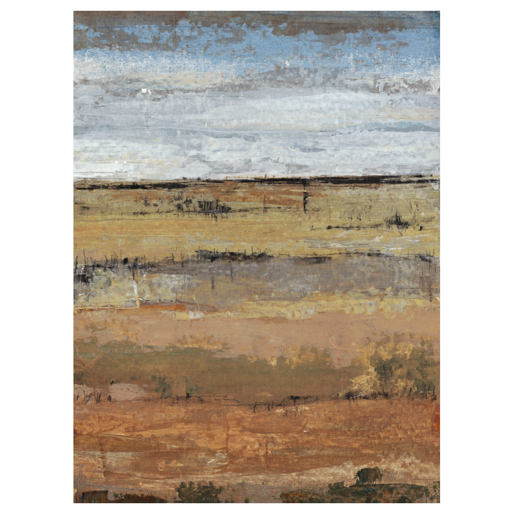 Abstract Field II Gallery Wrapped Canvas