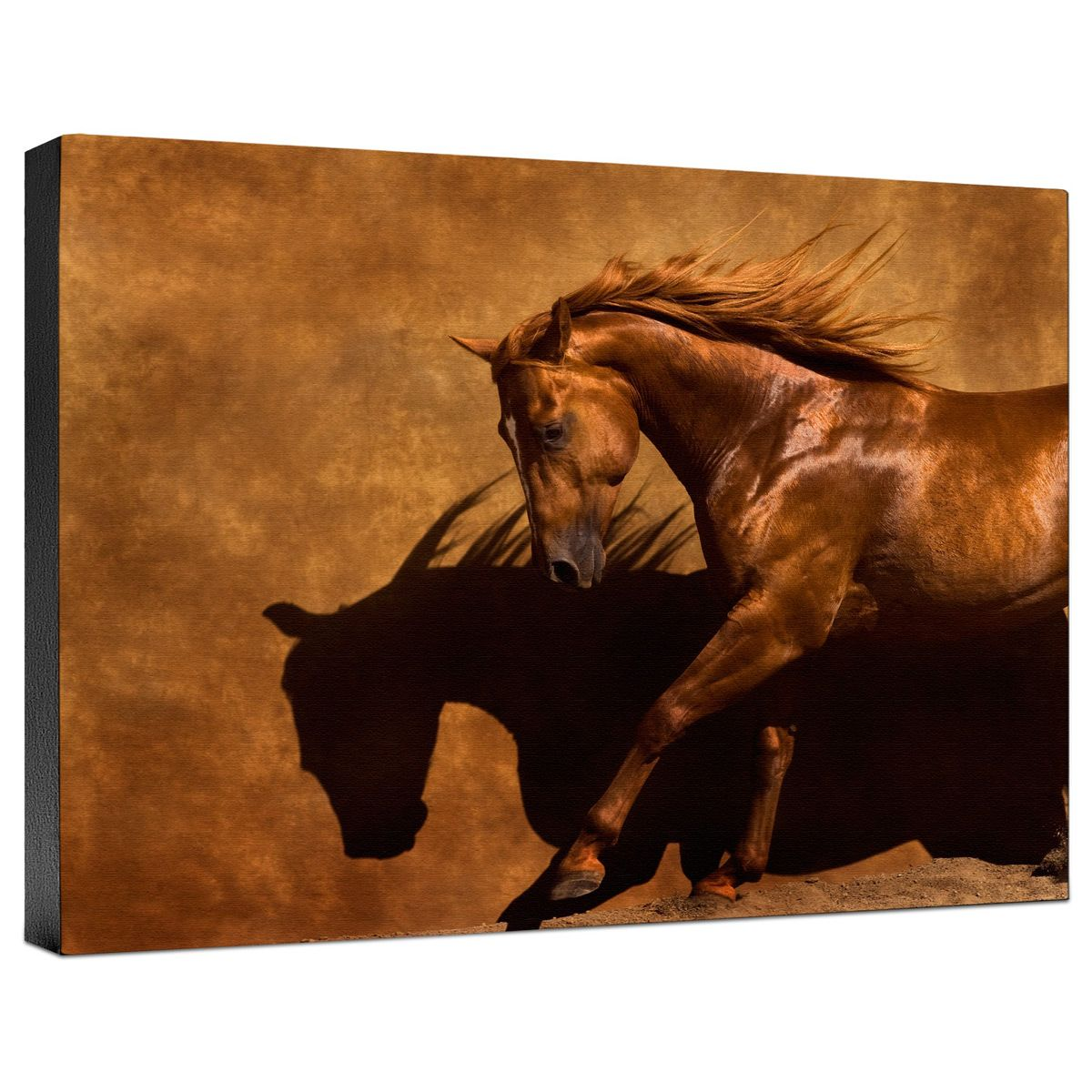 Adobe Dancer Gallery Wrapped Canvas