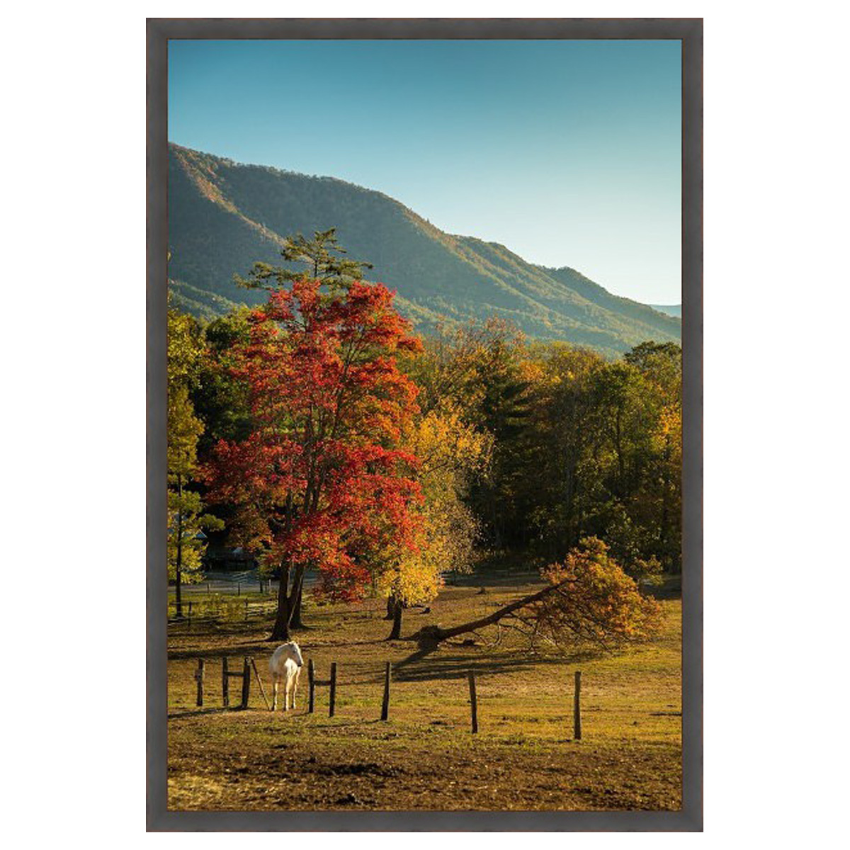 American Countryside Wall Art