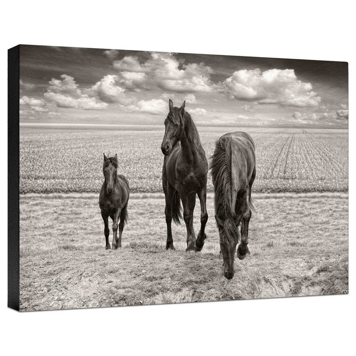 At Your Service Gallery Wrapped Canvas