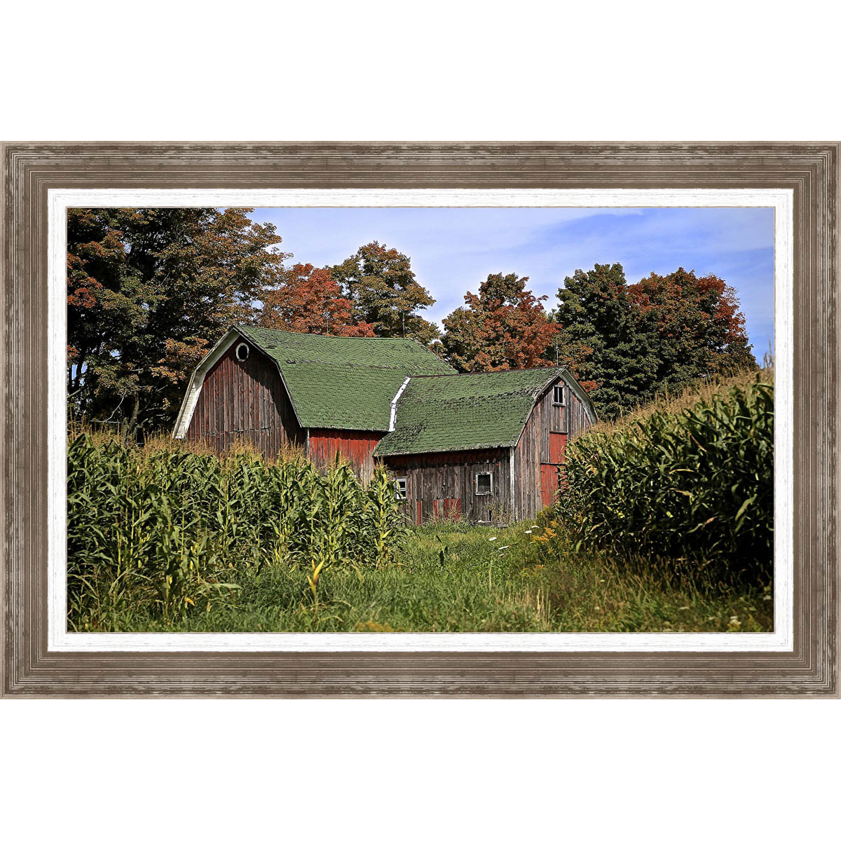 Barn with a Green Roof Framed Canvas