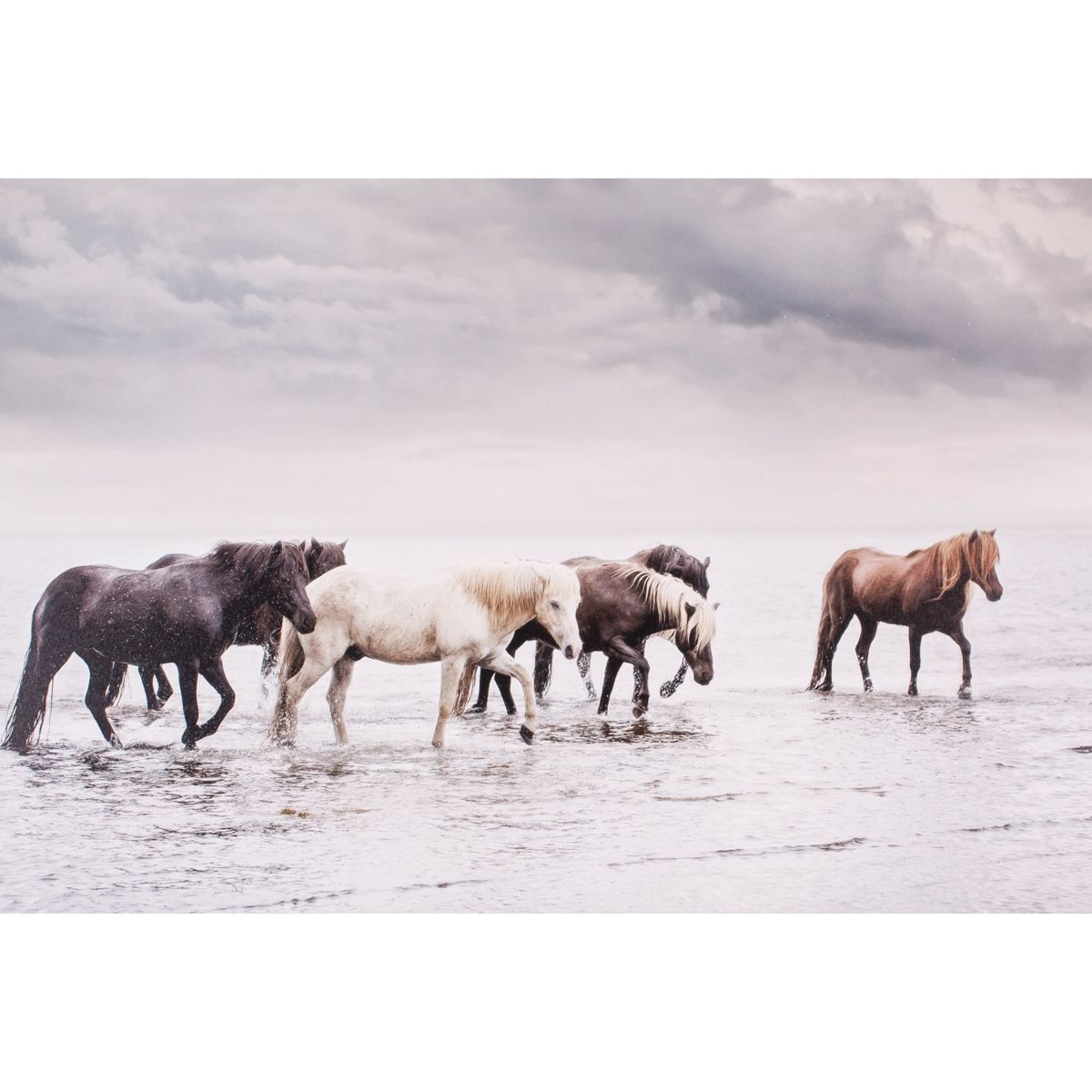 Beach Horses Canvas Art
