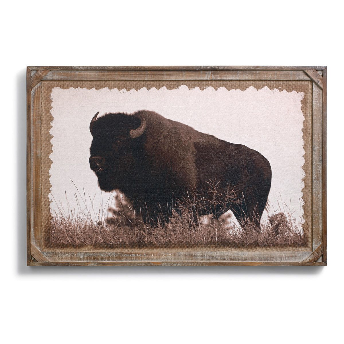 Big Buffalo Framed Wall Art