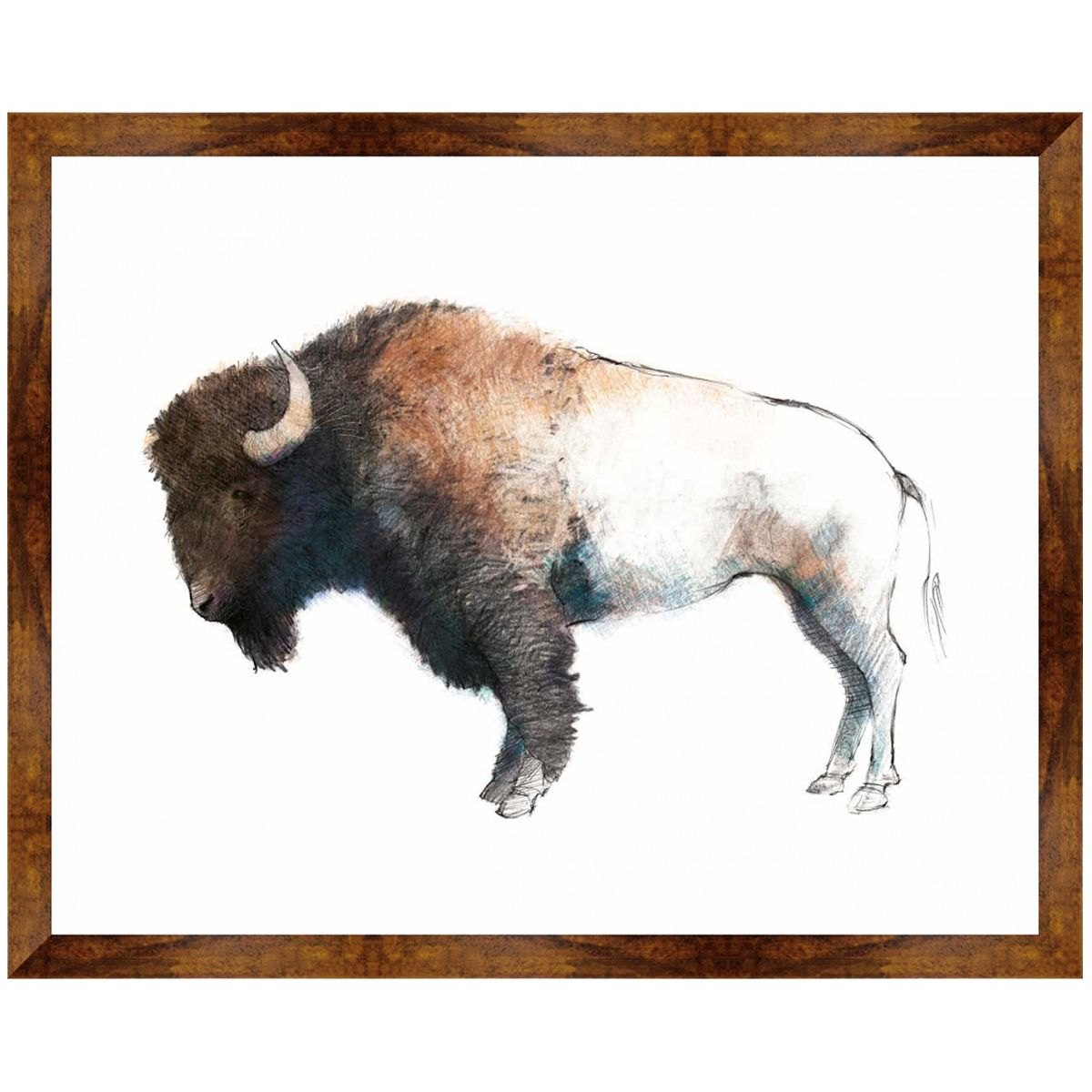 Bison Profile Canvas Art