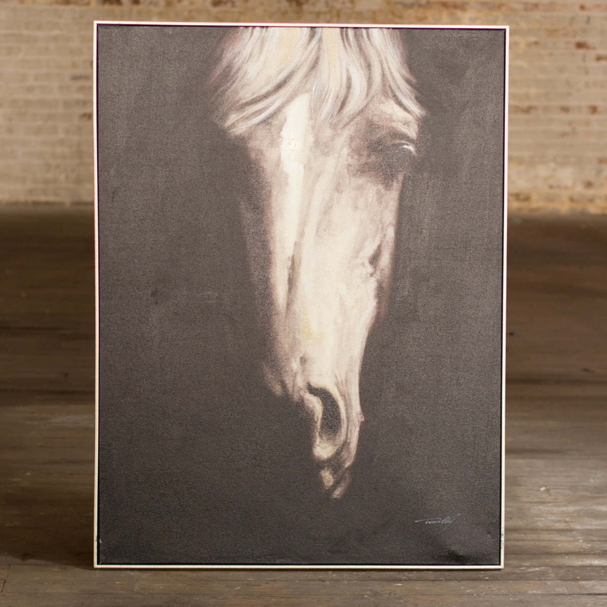 Black and White Horse Portrait Framed Canvas
