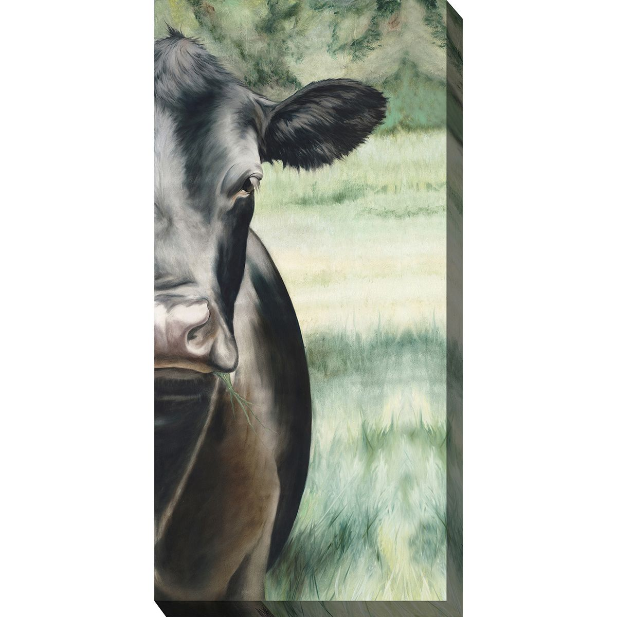 Black Cow Indoor/Outdoor Canvas Art