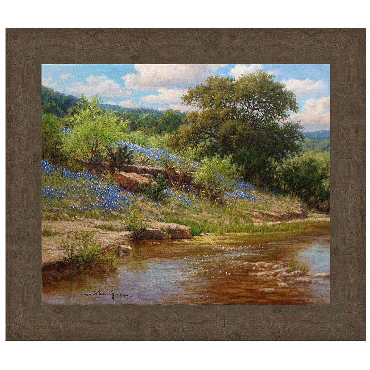 Bluebonnet Stream Canvas Art