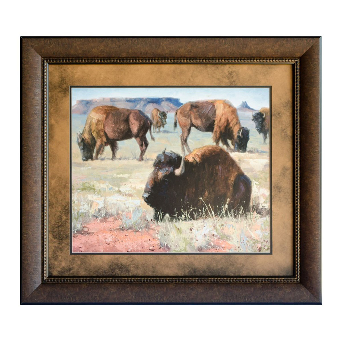 Buffalo Roam Framed Print