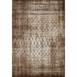 Cave Dwelling Brown Rug Collection