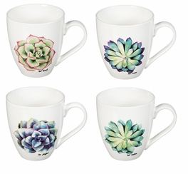 Colorful Succulent Coffee Mugs - Set of 4