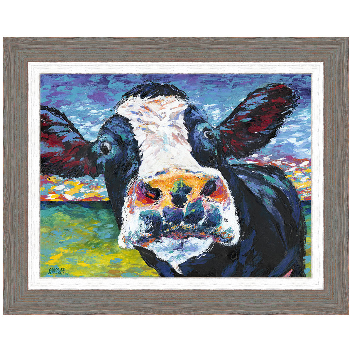 Curious Cow II Framed Print