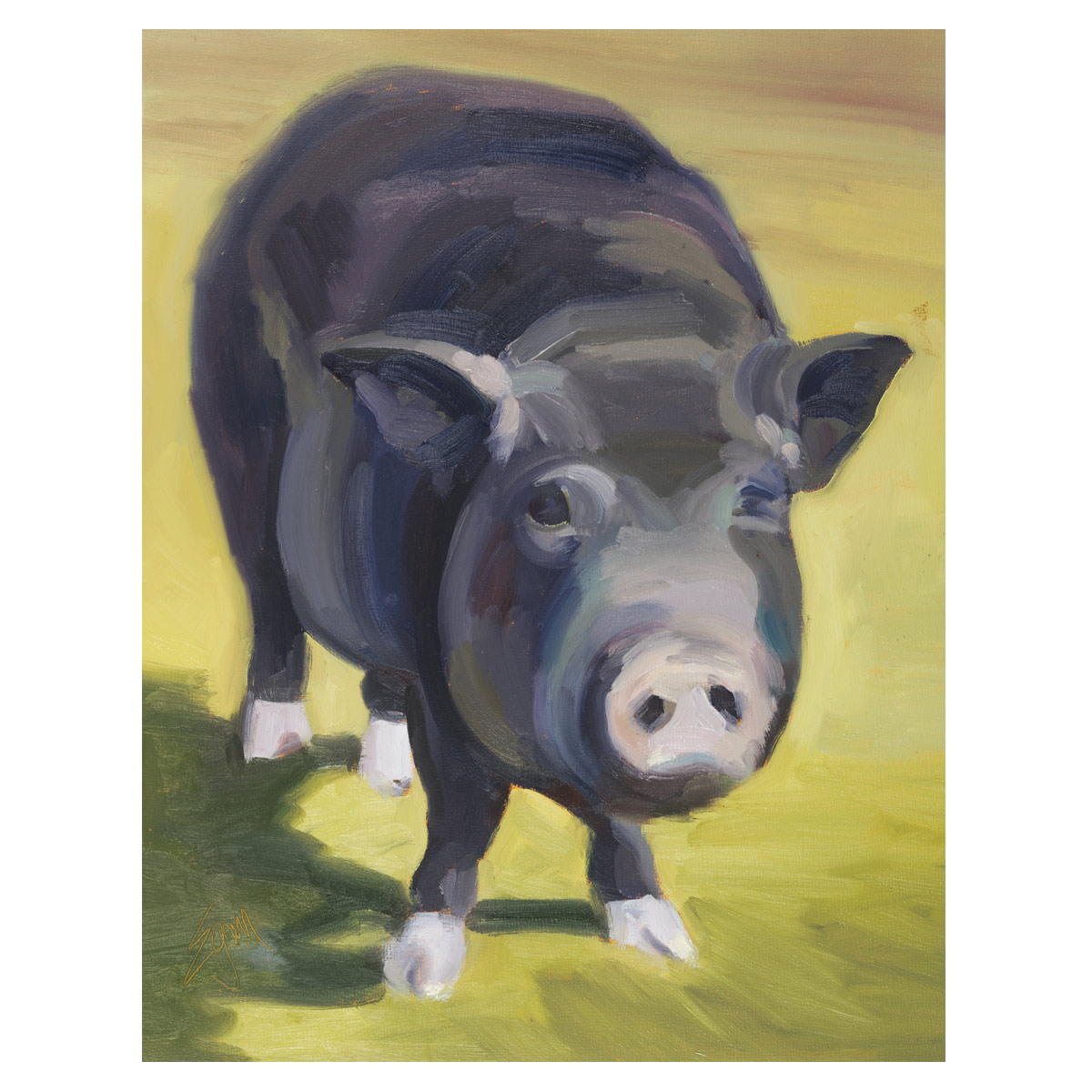Curly the Pig Canvas Art