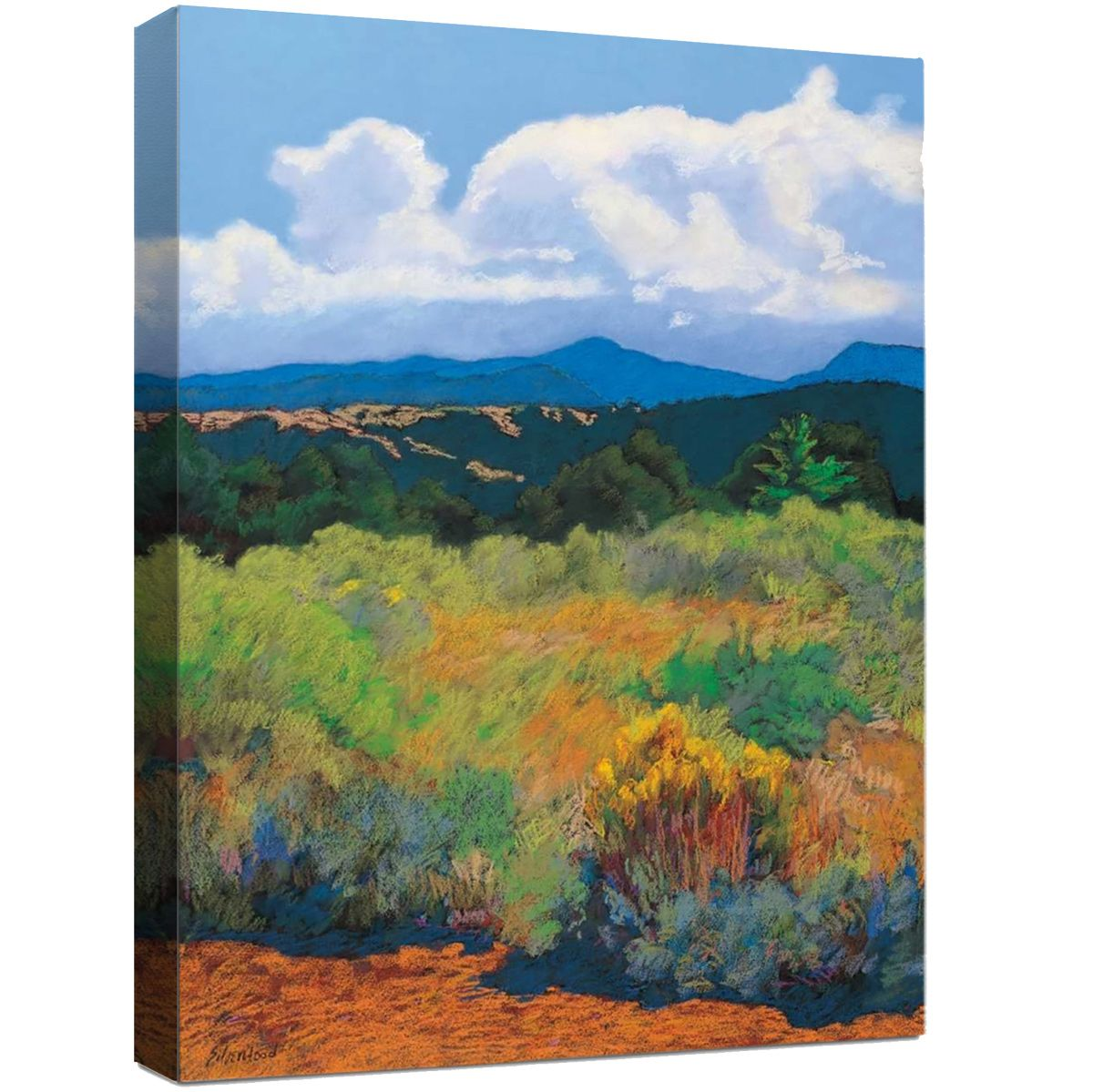 Desert Brush Canvas Art