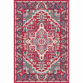 Desert Floral Cherry Rug Collection