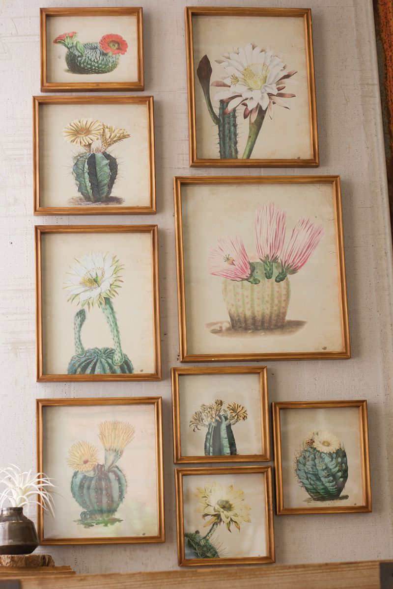 Desert Flowers Framed Prints - Set of 9