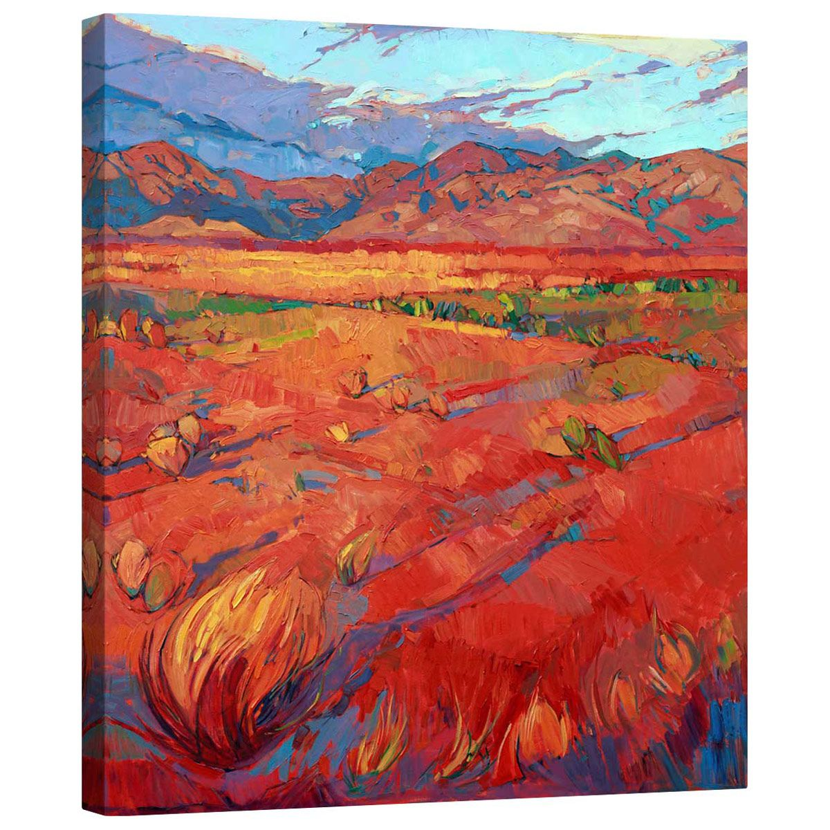 Desert Rainbow Center Mirror Wrapped Canvas