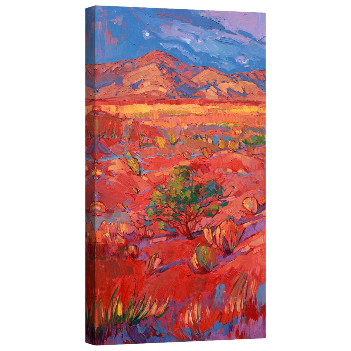 Desert Rainbow Left Mirror Wrapped Canvas