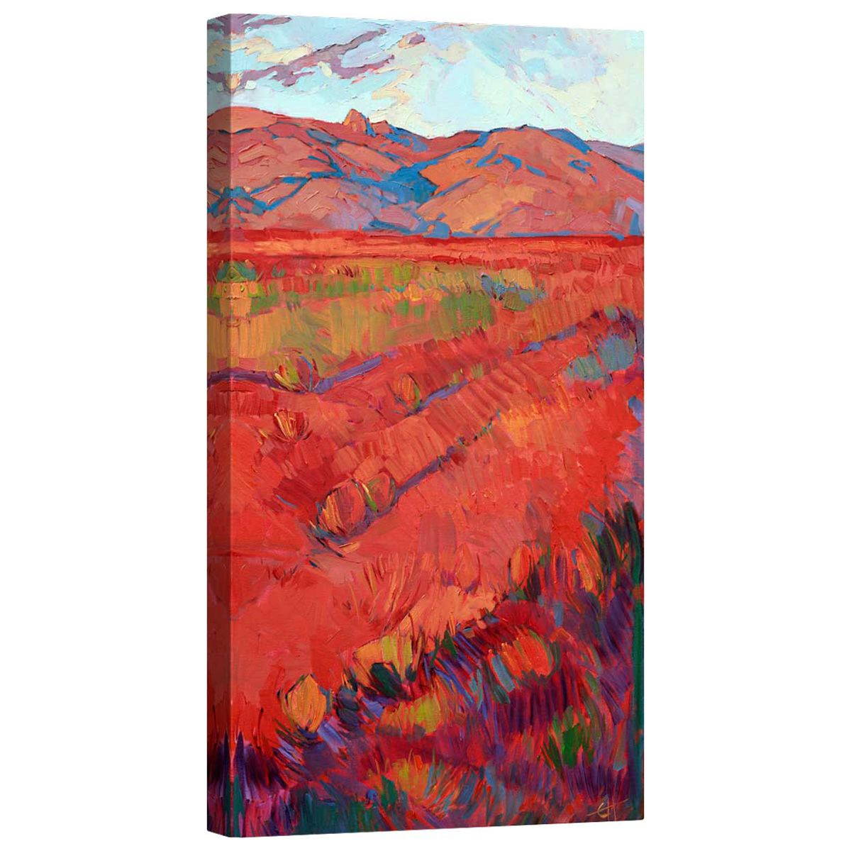 Desert Rainbow Right Mirror Wrapped Canvas