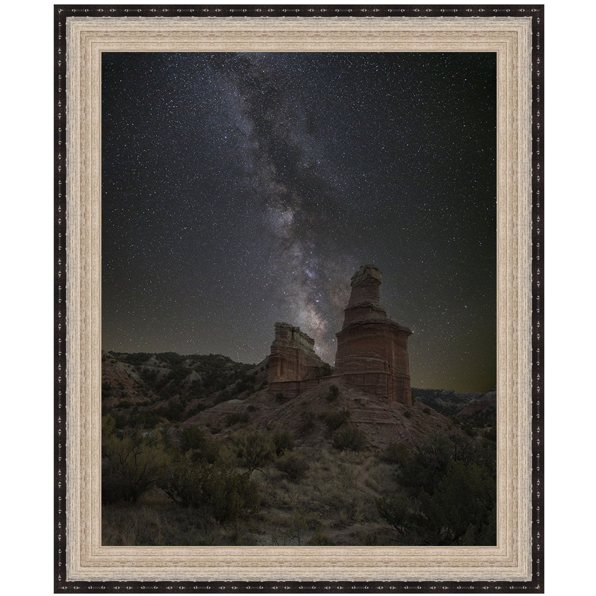 Desert Stars Canvas Art