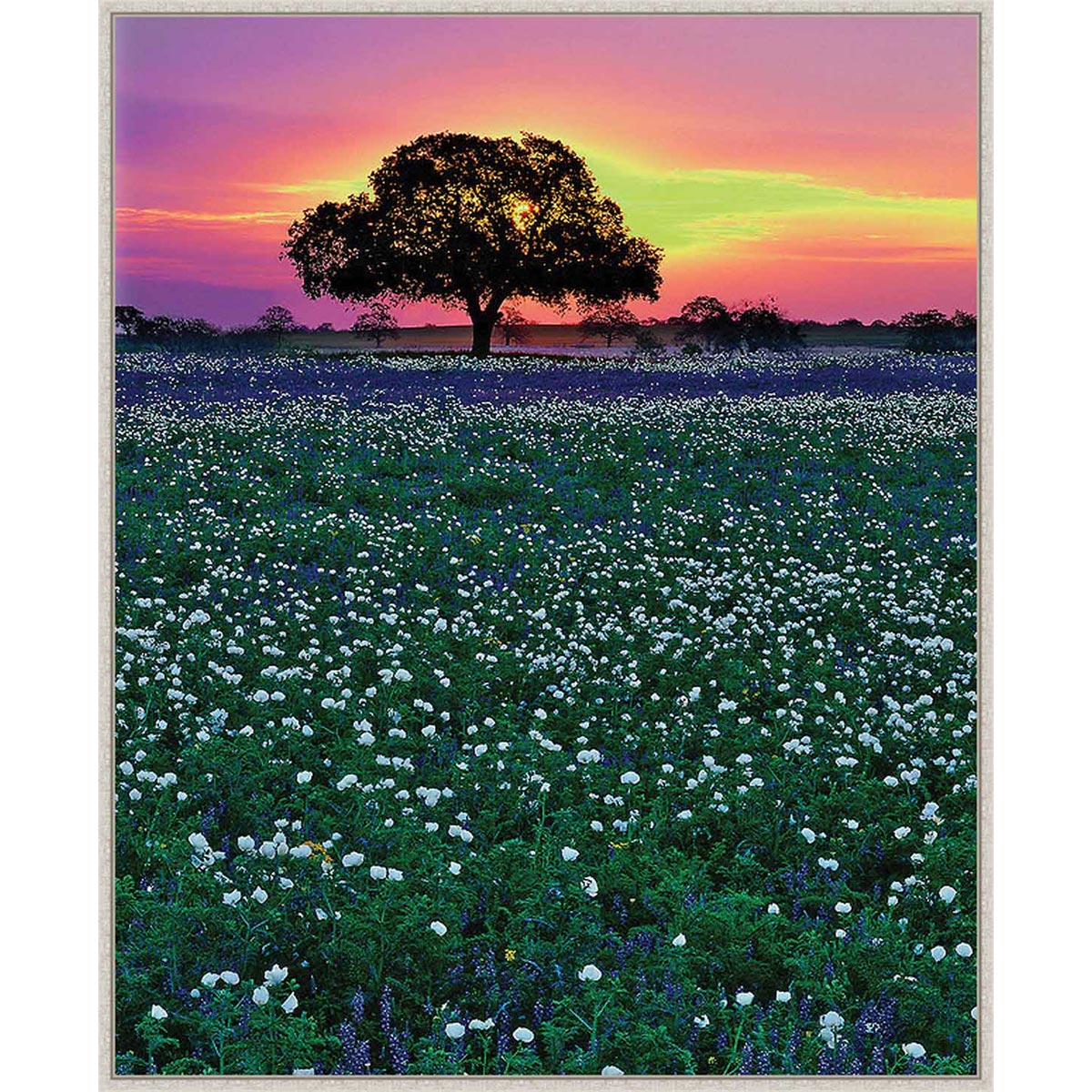Dusk on the Prairie Framed Canvas