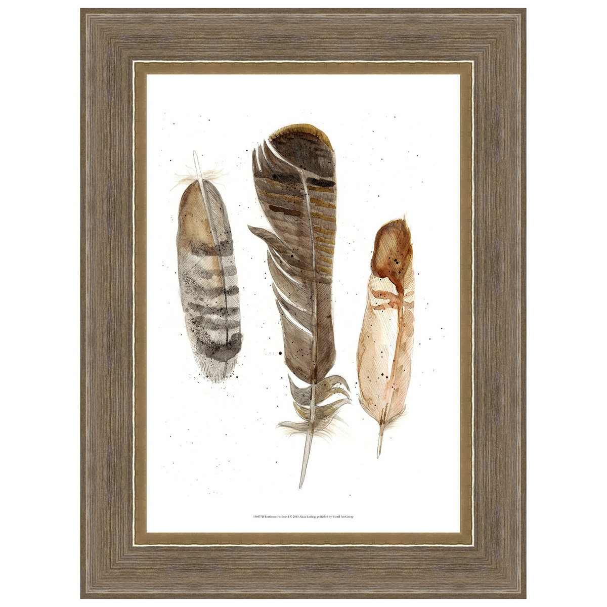 Earthtone Feathers I Framed Print