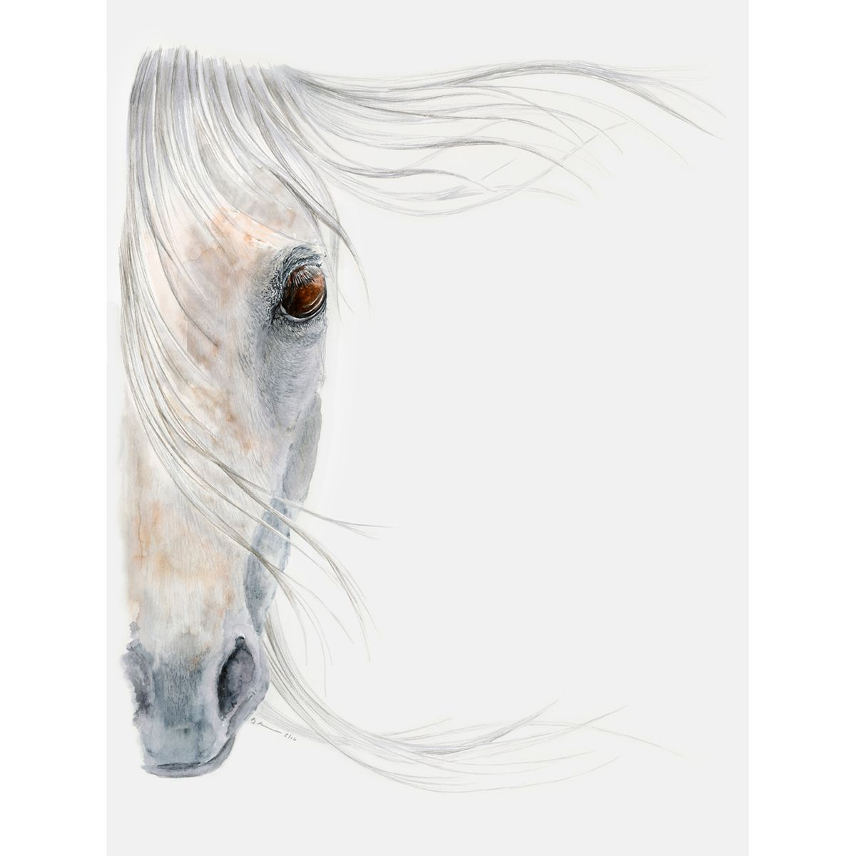 Equine Dream Canvas Art
