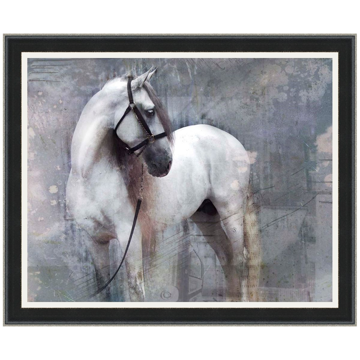 Equine Vision I Canvas Art