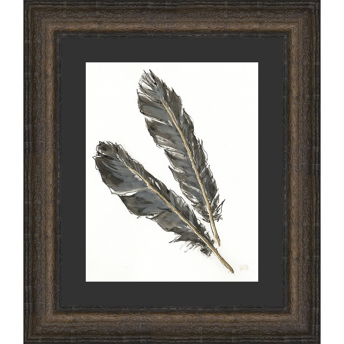 Feathers I Framed Print