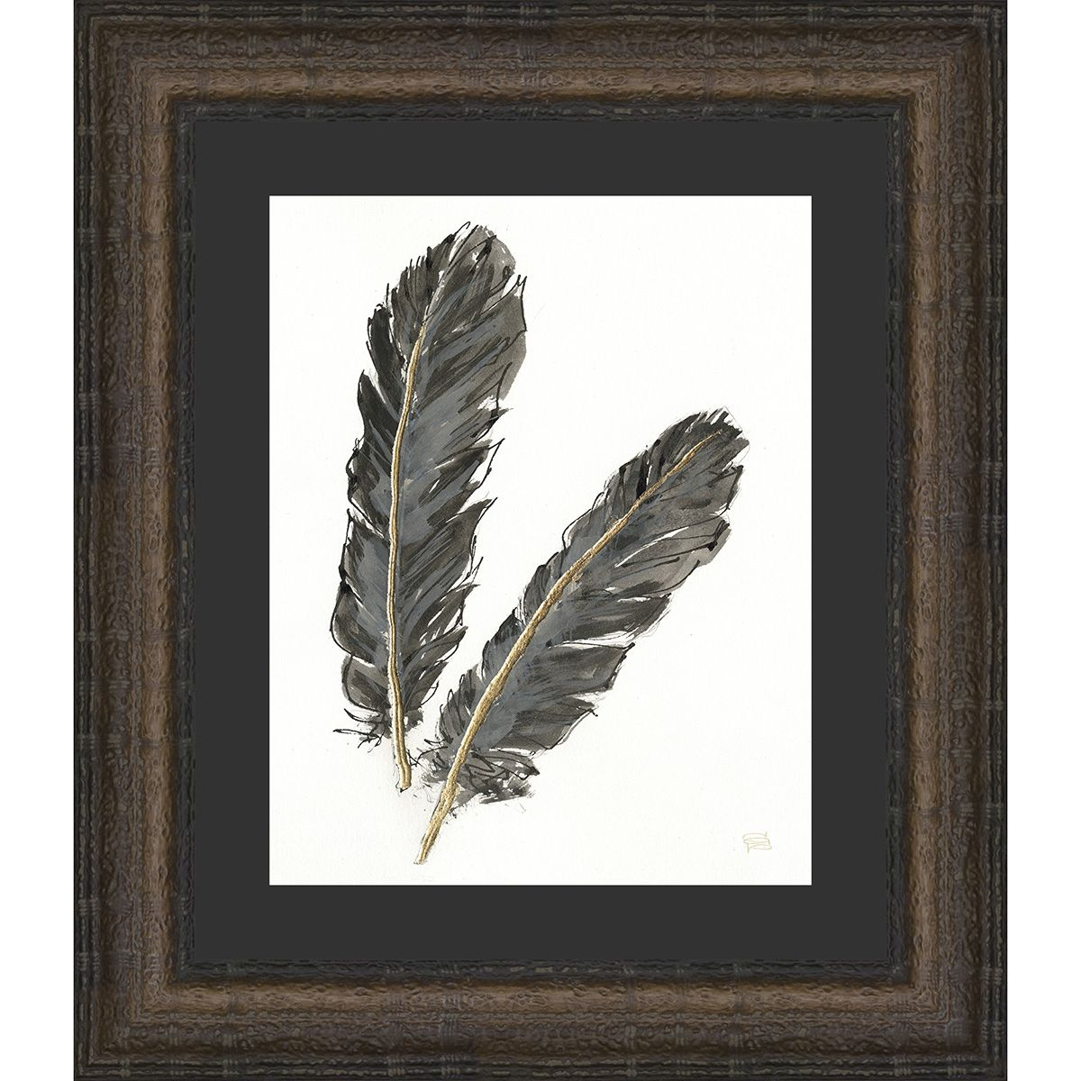 Feathers II Framed Print