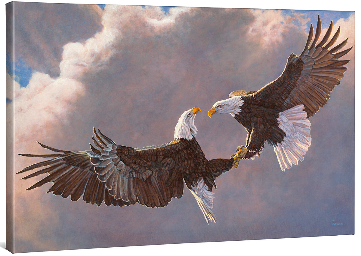 Fighting Bald Eagles Wrapped Canvas