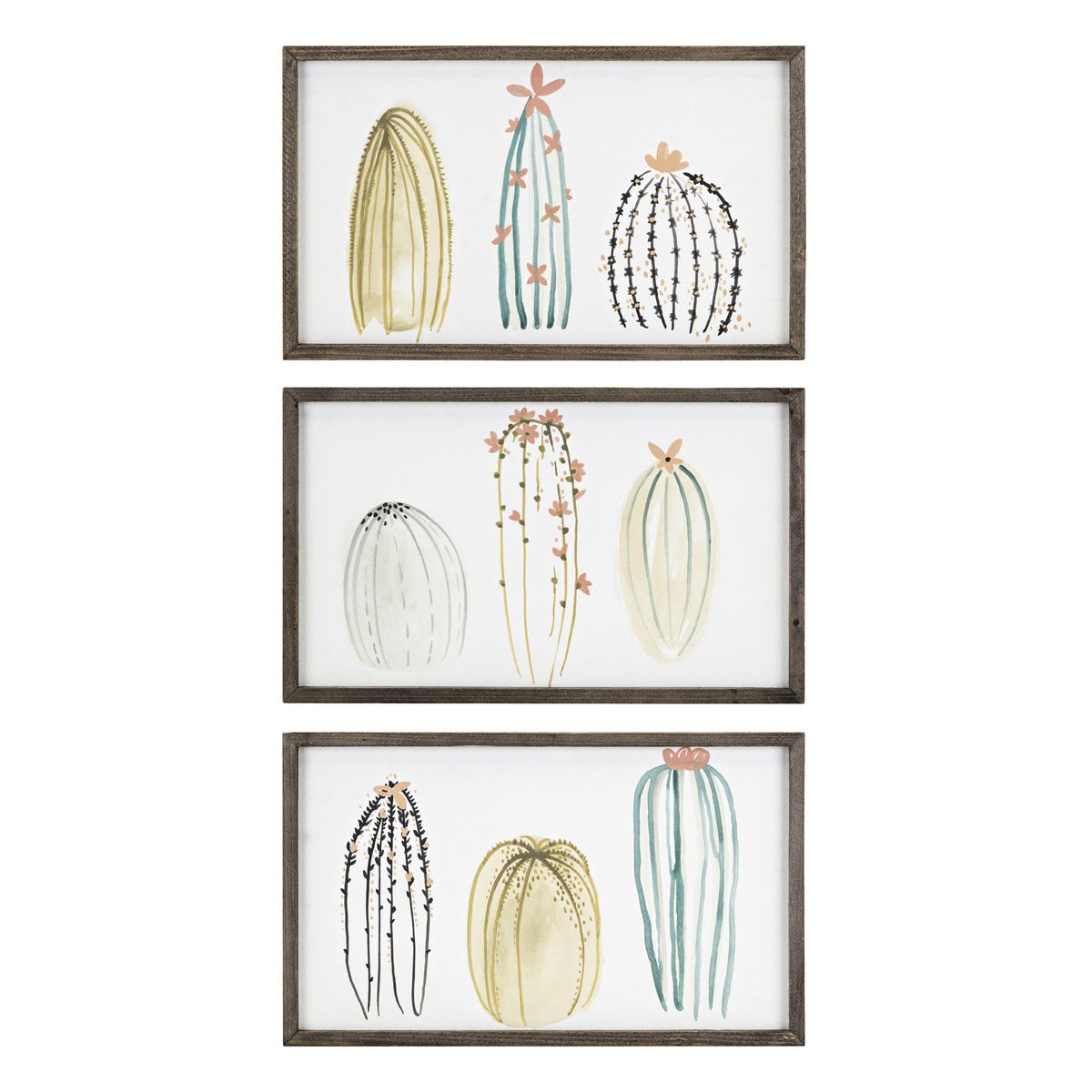 Flowering Cacti Framed Prints - Set of 3