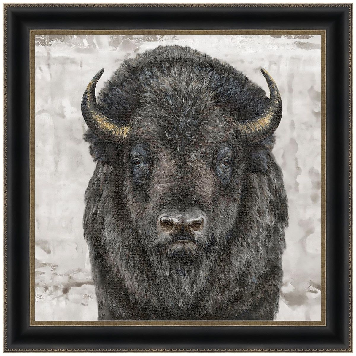 Gazing Bison Canvas Art