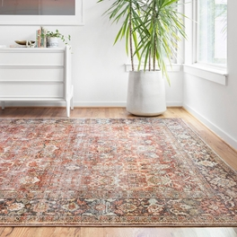 Genevieve Spice & Blue Rug Collection