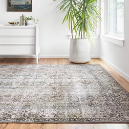 Genevieve Taupe & Stone Rug Collection