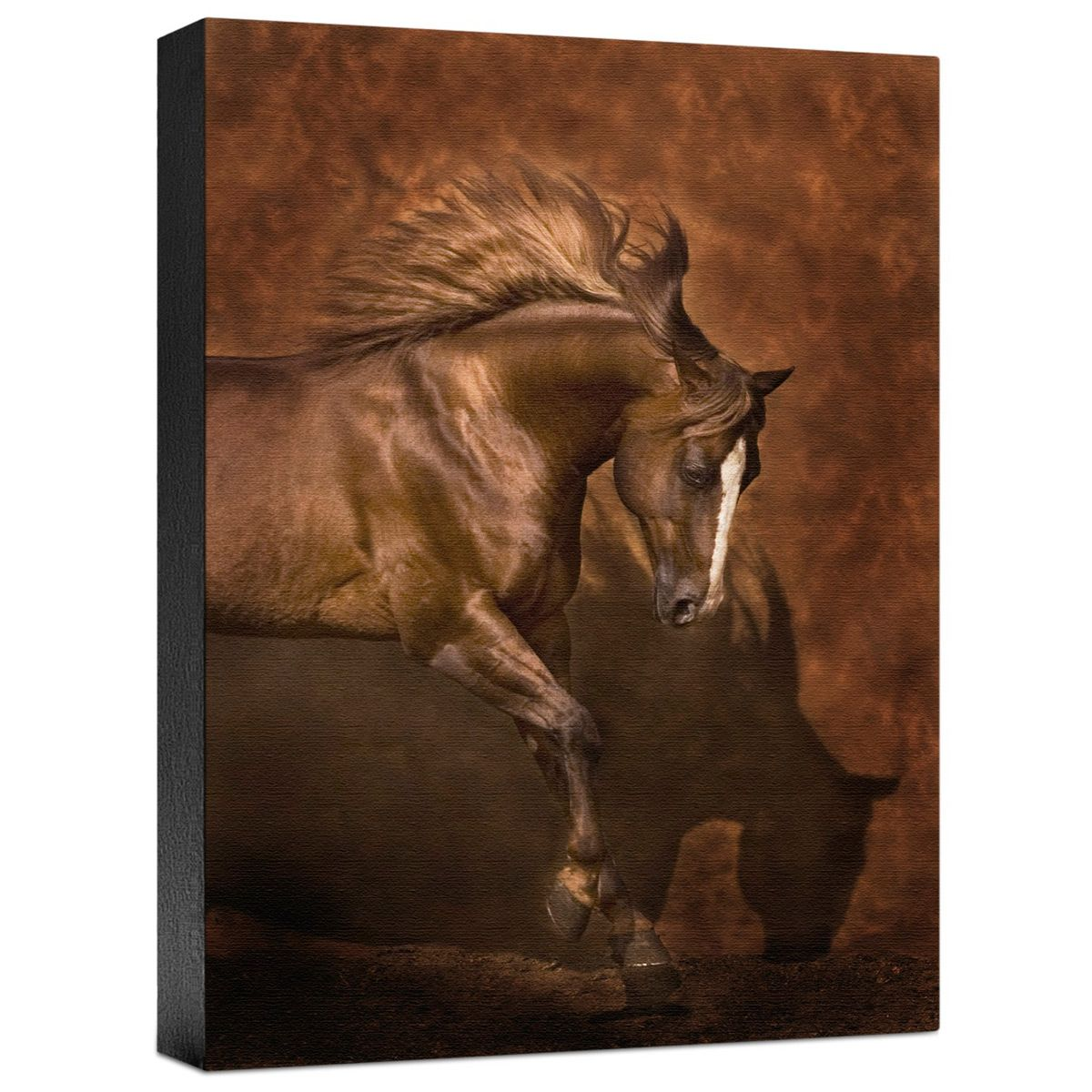 Horse Dancer Gallery Wrapped Canvas