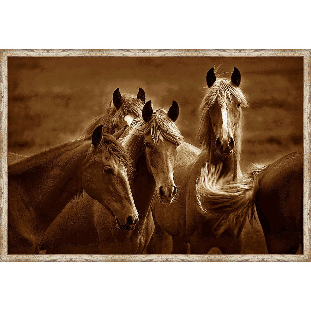 Horse Quartet Framed Canvas
