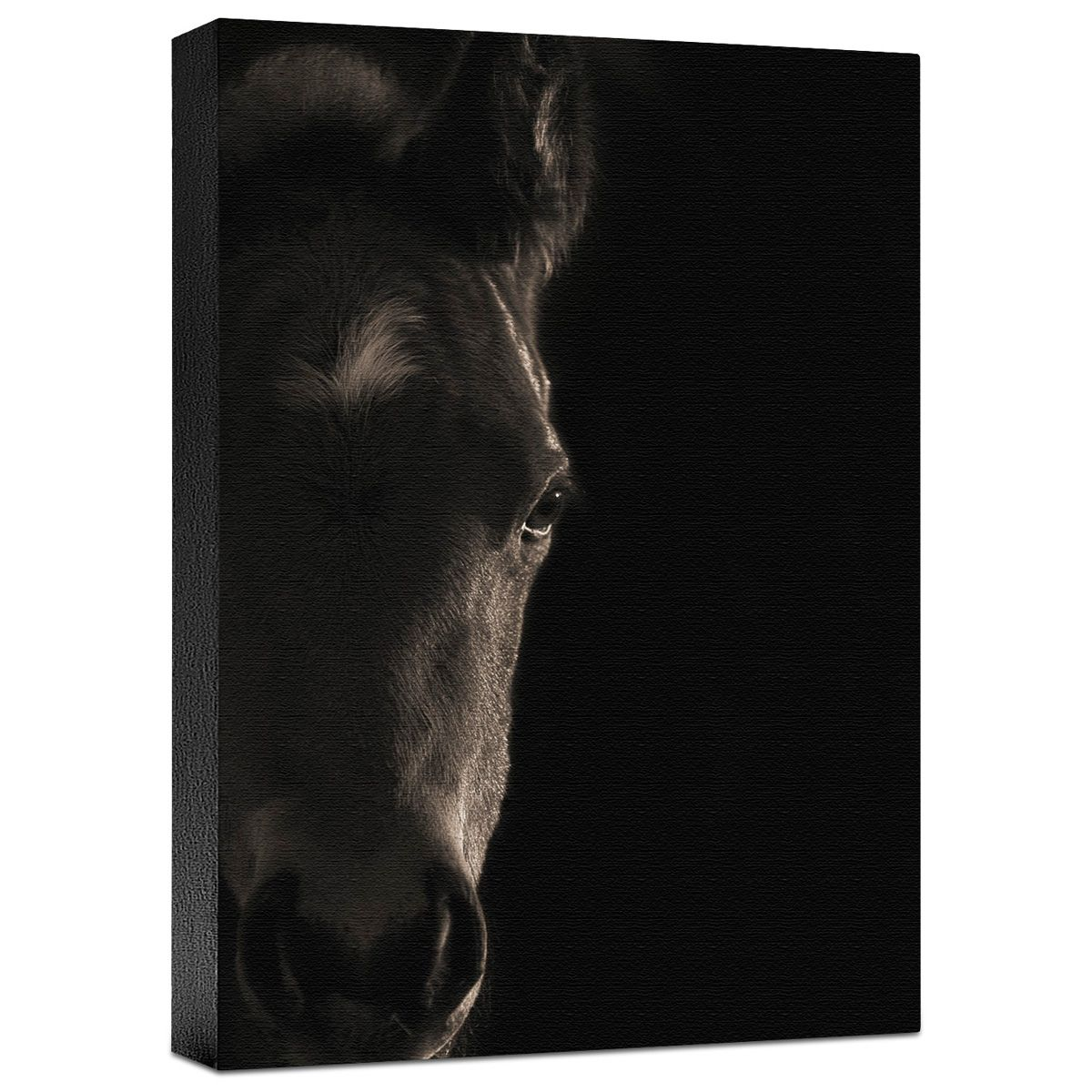 Look at Me Gallery Wrapped Canvas