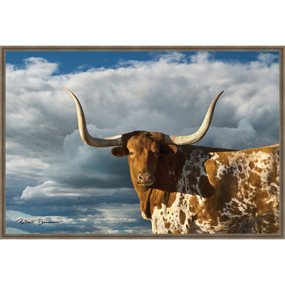 Majestic Longhorn Framed Canvas