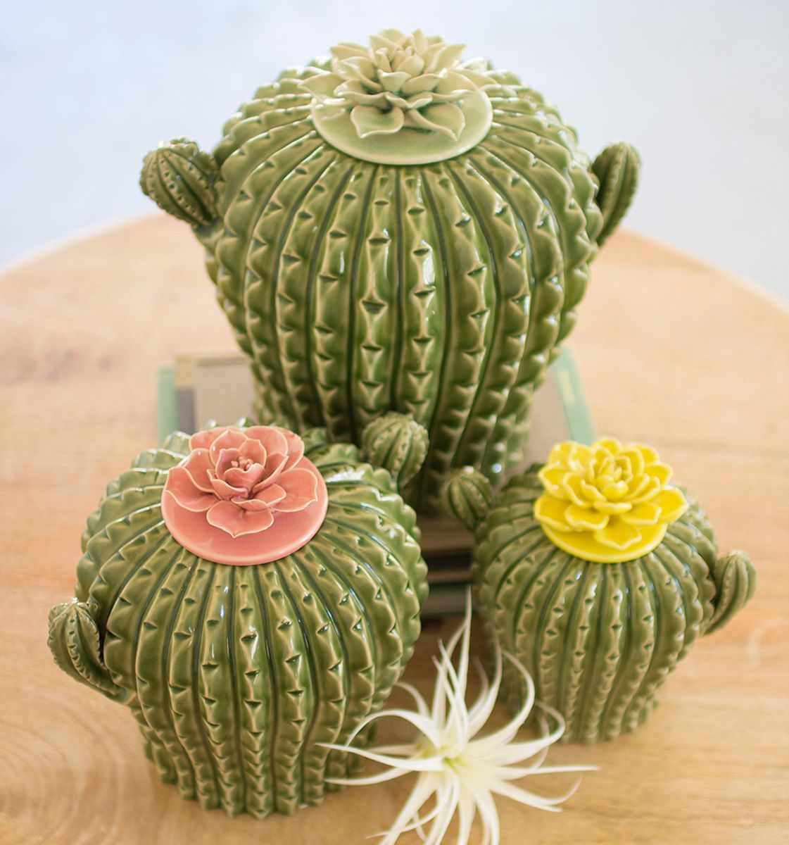Mojave Cactus Canisters - Set of 3