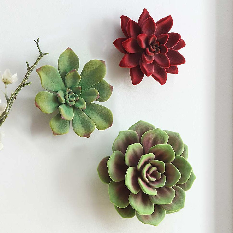 Mojave Succulent Wall Decor - Set of 3