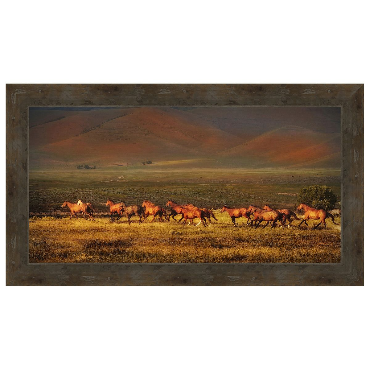 Montana Dreaming Framed Canvas