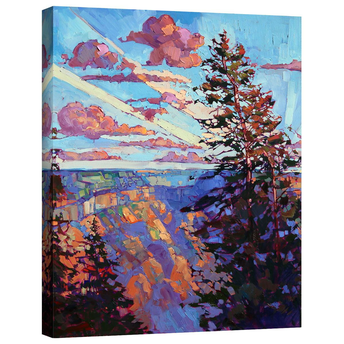 North Rim IV Mirror Wrapped Canvas